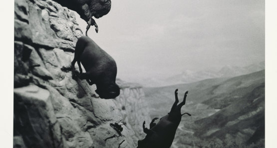 David Wojnarowicz, Untitled, 1988-89. © Estate of David Wojnarowicz. Courtesy of the Estate and P.P.O.W