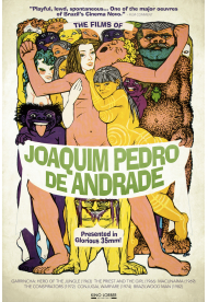 Films of Joaquim Pedro de Andrade, The